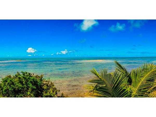 playa japaratinga corales