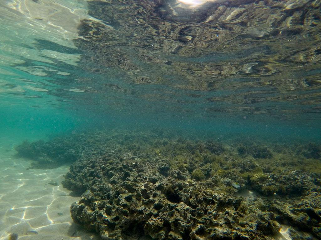 corales pontal de cupe piscinas naturales
